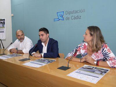 Diputación de Cádiz Concurso Pintura