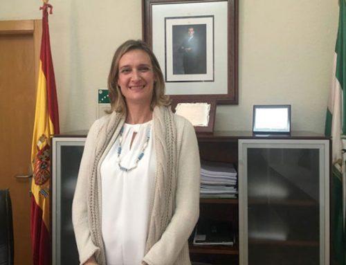 El Ayuntamiento de Ubrique ultima la suspensión de tasas e impuestos municipales para pymes y autónomos