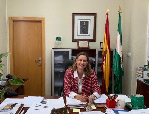 El Ayuntamiento celebrará este martes un pleno ordinario presencial para tratar las medidas sociales y económicas frente a la crisis del COVID-19
